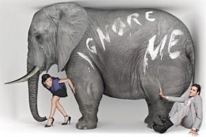 elephantroom50__01__630x420